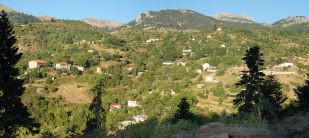 Nexori_Panorama